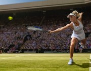 Wimbledon Tennis player